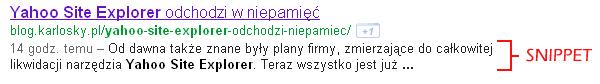 Google_Snippet